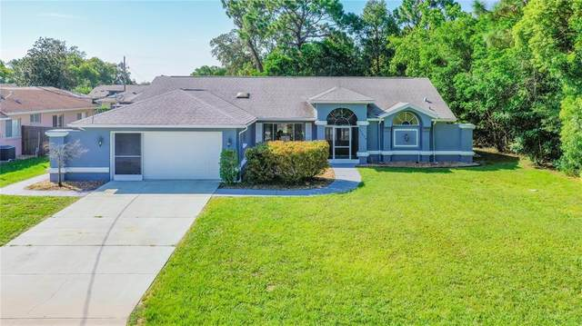 11408 Beechdale Avenue, Spring Hill, FL 34608 (MLS #T3320844) :: Sarasota Property Group at NextHome Excellence