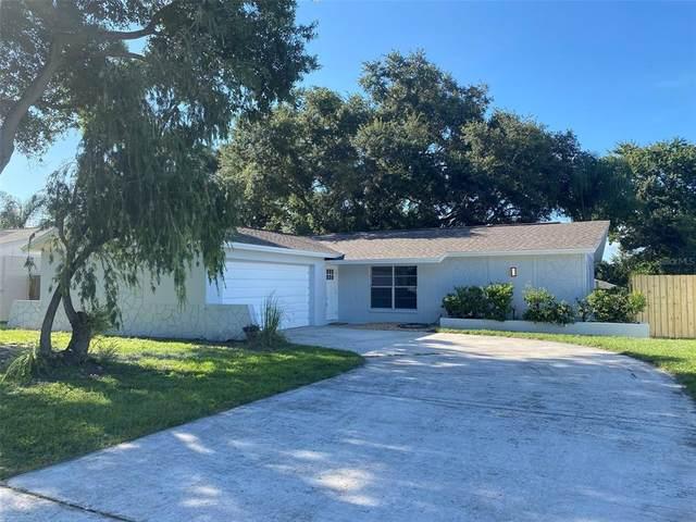 2212 Valleybrook Avenue, Valrico, FL 33594 (MLS #T3320845) :: Cartwright Realty