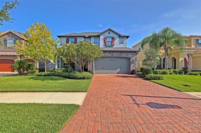4083 Canino Court, Wesley Chapel, FL 33543 (MLS #T3320861) :: Vacasa Real Estate