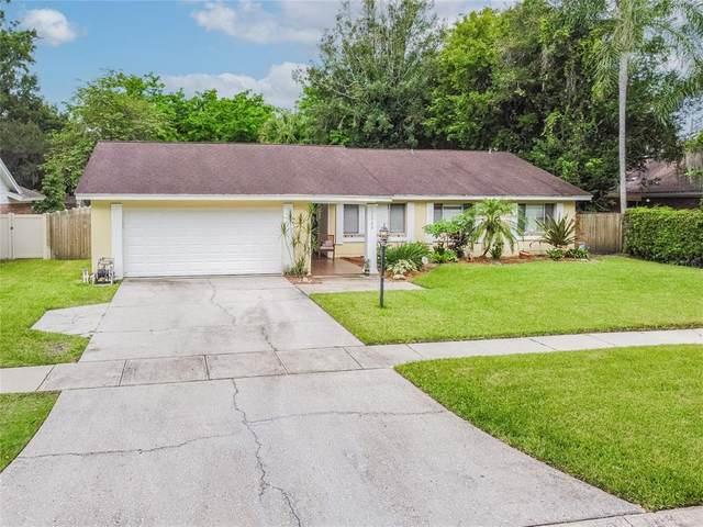 11703 Phoenix Circle, Tampa, FL 33618 (MLS #T3320865) :: Zarghami Group