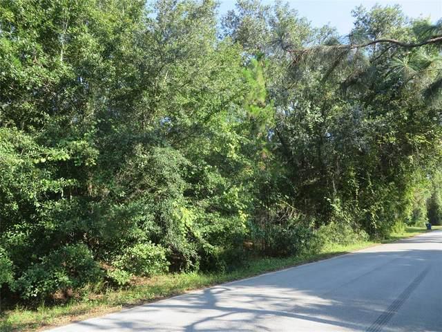 Conrad Street, Lot 72, Wesley Chapel, FL 33544 (MLS #T3320884) :: Team Bohannon