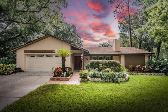 505 Cliff Drive, Temple Terrace, FL 33617 (MLS #T3320895) :: The Hustle and Heart Group