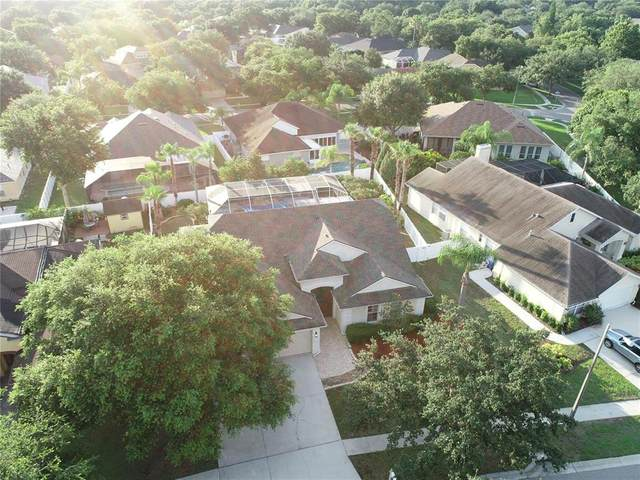 9434 Clover Glen Drive, Riverview, FL 33569 (MLS #T3320900) :: Cartwright Realty