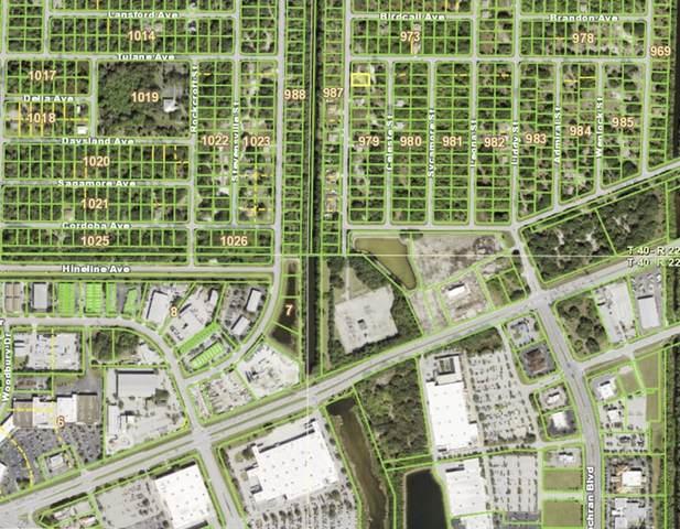 406 Ravenswood Boulevard, Port Charlotte, FL 33954 (MLS #T3320914) :: Century 21 Professional Group