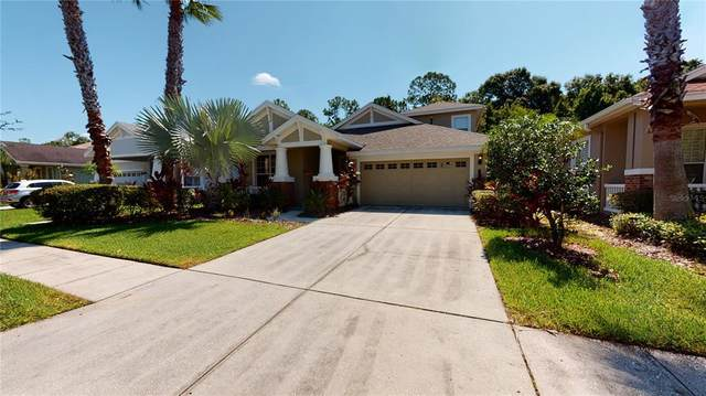 20022 Heritage Point Drive, Tampa, FL 33647 (MLS #T3320917) :: The Robertson Real Estate Group