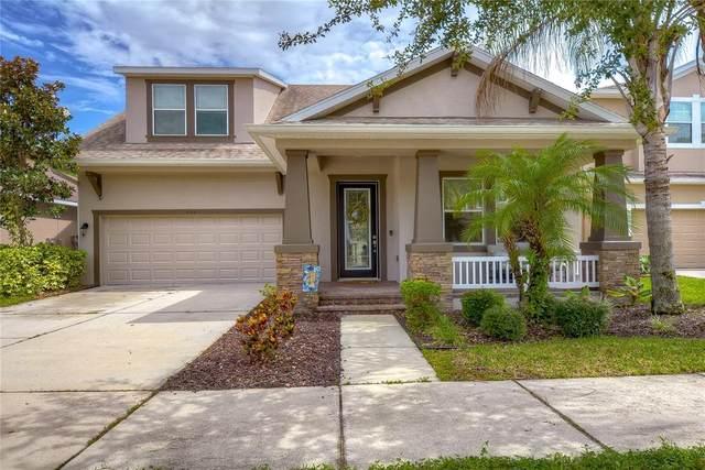6913 Rocky Canyon Way, Tampa, FL 33625 (MLS #T3320933) :: Vacasa Real Estate