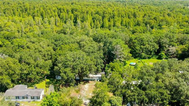 24815 Audrey Road, Land O Lakes, FL 34639 (MLS #T3320940) :: Gate Arty & the Group - Keller Williams Realty Smart