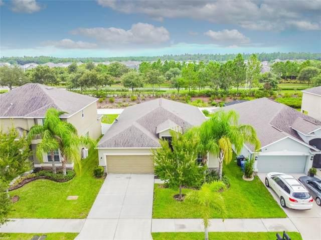 12113 Echo Basin Cove, Riverview, FL 33579 (#T3320964) :: Caine Luxury Team