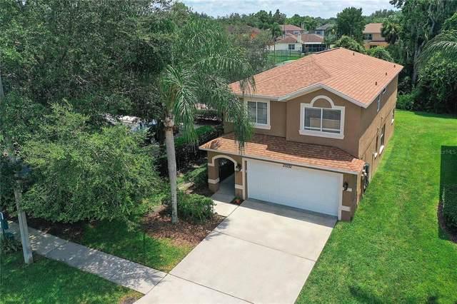 27232 Big Sur Drive, Wesley Chapel, FL 33544 (MLS #T3320965) :: Team Bohannon