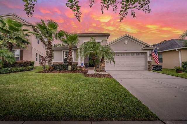 3241 Granite Ridge, Land O Lakes, FL 34638 (MLS #T3320979) :: Cartwright Realty
