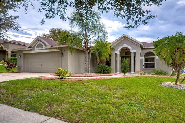 4501 Compass Oaks Drive, Valrico, FL 33596 (MLS #T3320996) :: The Robertson Real Estate Group