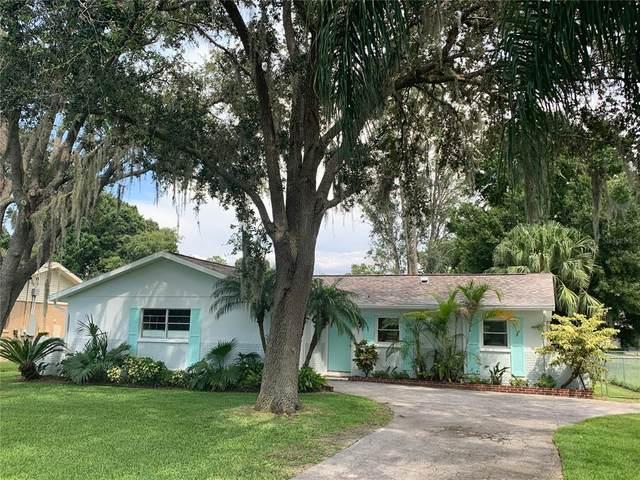 505 Shore Drive E, Oldsmar, FL 34677 (MLS #T3321000) :: Delgado Home Team at Keller Williams