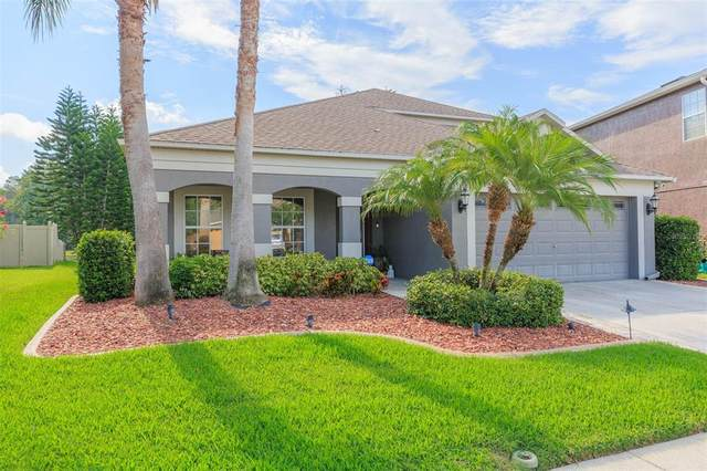 3004 Downan Point Drive, Land O Lakes, FL 34638 (MLS #T3321009) :: Cartwright Realty