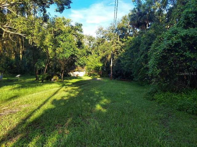 6810 Simmons Loop, Riverview, FL 33578 (MLS #T3321023) :: Prestige Home Realty