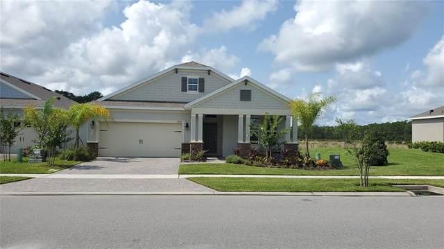 3003 Borassus Drive, New Smyrna Beach, FL 32168 (MLS #T3321026) :: MVP Realty
