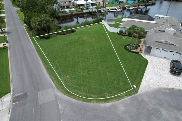 4081 Gulf Coast Drive, Hernando Beach, FL 34607 (MLS #T3321033) :: Carmena and Associates Realty Group