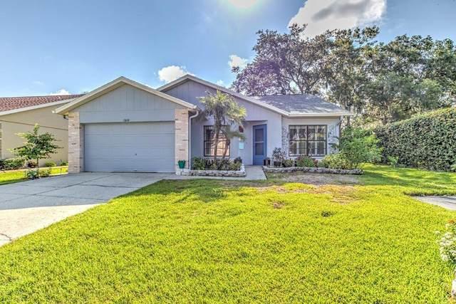 13110 Gaillard Place, Riverview, FL 33579 (MLS #T3321034) :: Medway Realty