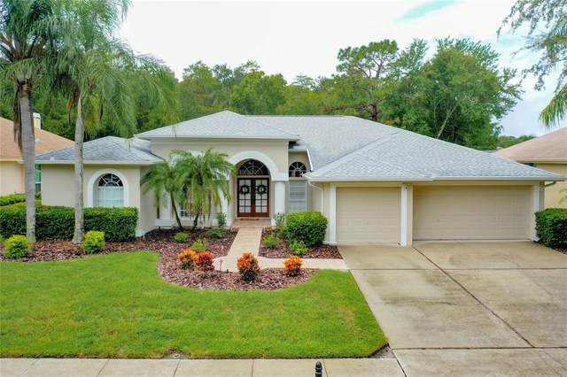 4110 Auston Way, Palm Harbor, FL 34685 (MLS #T3321047) :: The Robertson Real Estate Group