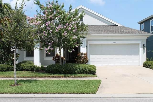 6314 Springline Place, Apollo Beach, FL 33572 (MLS #T3321079) :: Vacasa Real Estate
