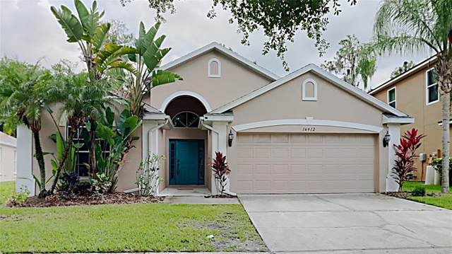 16912 Hawkridge Road, Lithia, FL 33547 (MLS #T3321087) :: Dalton Wade Real Estate Group