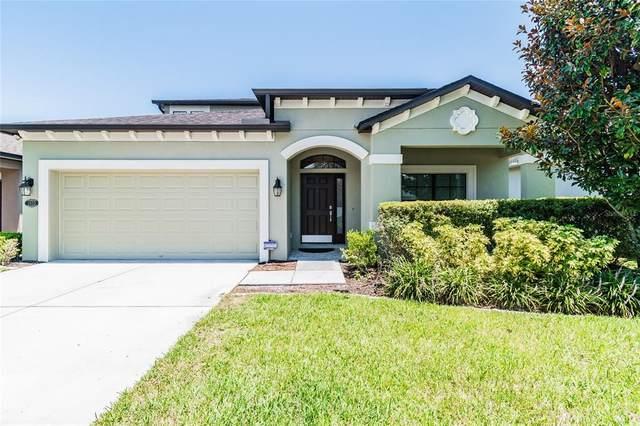 7950 Camden Woods Drive, Tampa, FL 33619 (MLS #T3321095) :: Bridge Realty Group