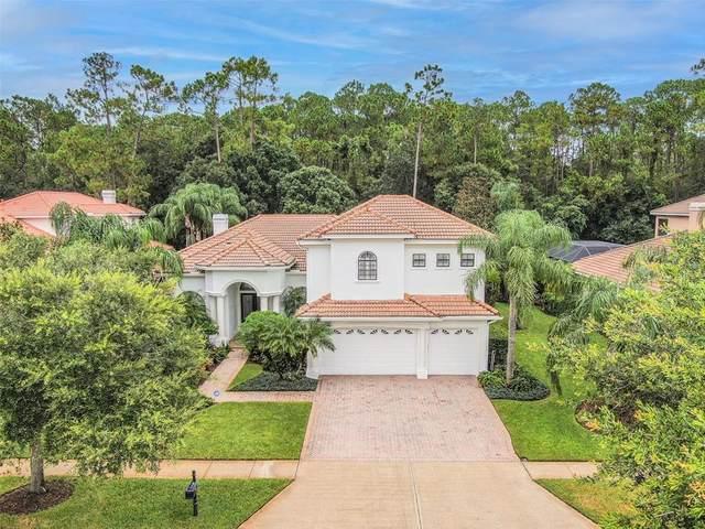 9519 Tree Tops Lake Rd, Tampa, FL 33626 (MLS #T3321108) :: Delgado Home Team at Keller Williams