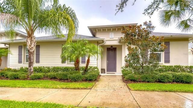 7005 Briarhill Court, Tampa, FL 33625 (MLS #T3321168) :: Vacasa Real Estate