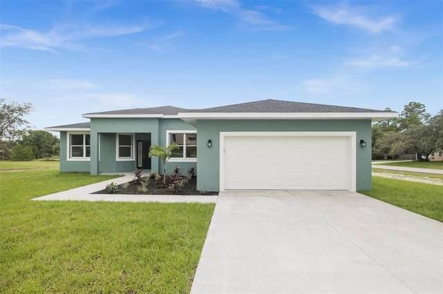 10238 Caracara Avenue, Weeki Wachee, FL 34613 (MLS #T3321183) :: Cartwright Realty