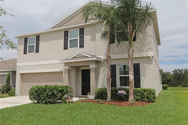 17212 White Mangrove Drive, Wimauma, FL 33598 (#T3321188) :: Caine Luxury Team