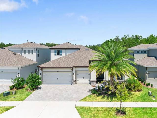 4466 Tuner Bend, Land O Lakes, FL 34638 (MLS #T3321205) :: Cartwright Realty
