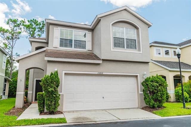 10606 Esher Wood Court, Tampa, FL 33626 (MLS #T3321225) :: Delgado Home Team at Keller Williams