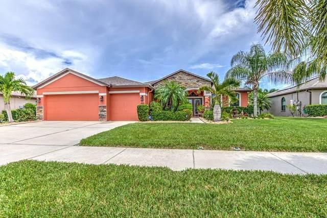 320 Hope Bay Loop, Apollo Beach, FL 33572 (MLS #T3321245) :: Vacasa Real Estate