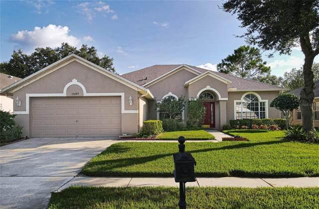19209 Dove Creek Drive, Tampa, FL 33647 (MLS #T3321254) :: Delgado Home Team at Keller Williams