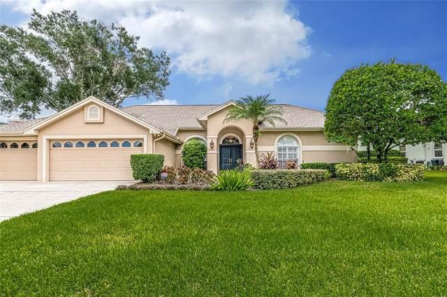 16107 Belle Meade Boulevard, Odessa, FL 33556 (MLS #T3321266) :: Vacasa Real Estate