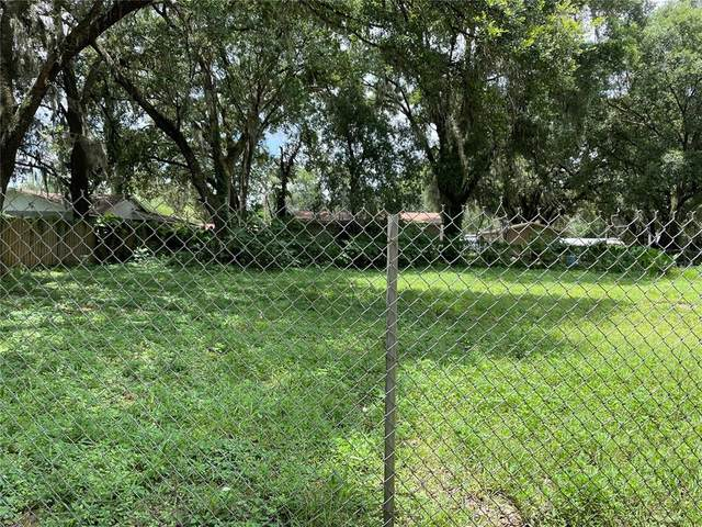 060212-0000, Thonotosassa, FL 33592 (MLS #T3321273) :: The Hustle and Heart Group