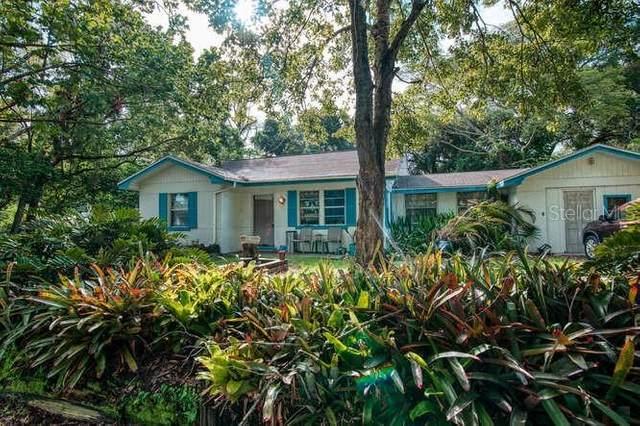401 Park Boulevard, Oldsmar, FL 34677 (MLS #T3321274) :: Delgado Home Team at Keller Williams