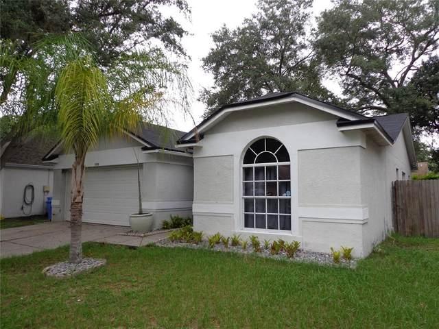 1216 Bloom Hill Avenue, Valrico, FL 33596 (MLS #T3321286) :: Vacasa Real Estate
