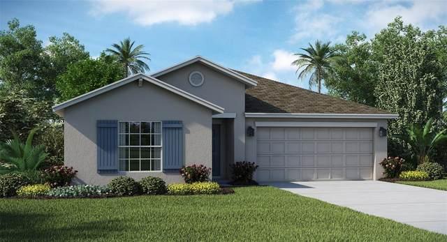 990 Laurel View Way, Groveland, FL 34736 (MLS #T3321296) :: The Curlings Group