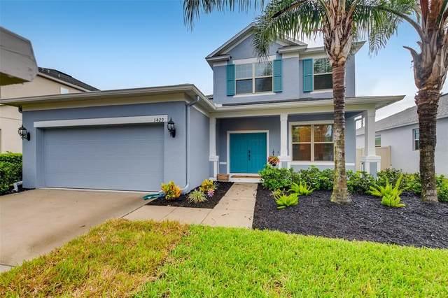 1429 Pine Marsh Loop, Saint Cloud, FL 34771 (MLS #T3321304) :: Vacasa Real Estate
