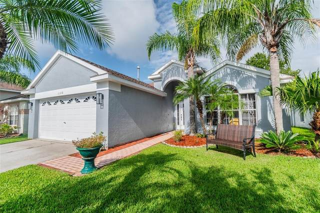 11318 Cypress Reserve Drive, Tampa, FL 33626 (MLS #T3321312) :: GO Realty
