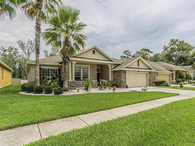 7410 Ambleside Drive, Land O Lakes, FL 34637 (MLS #T3321319) :: Griffin Group