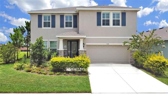 5024 Jackel Chase Drive, Wimauma, FL 33598 (#T3321361) :: Caine Luxury Team