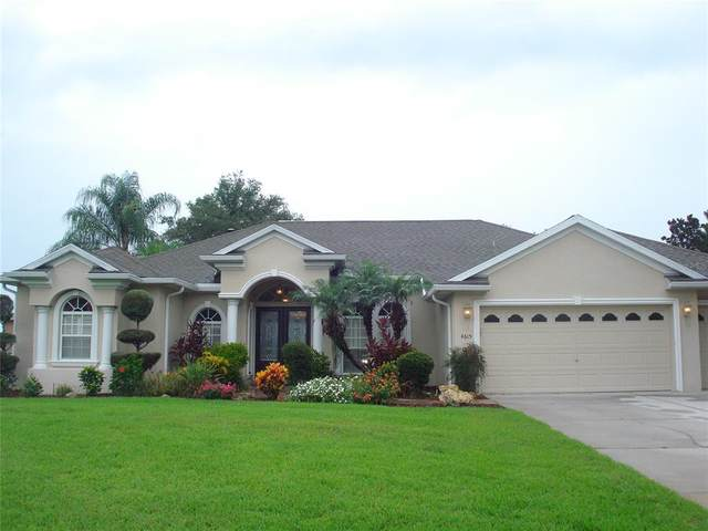 4615 Cozzo Drive, Land O Lakes, FL 34639 (MLS #T3321367) :: Gate Arty & the Group - Keller Williams Realty Smart