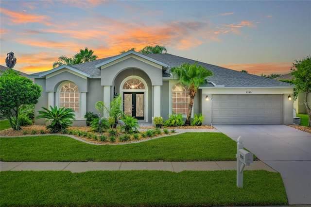 5230 Strike The Gold Lane, Wesley Chapel, FL 33544 (MLS #T3321386) :: Griffin Group