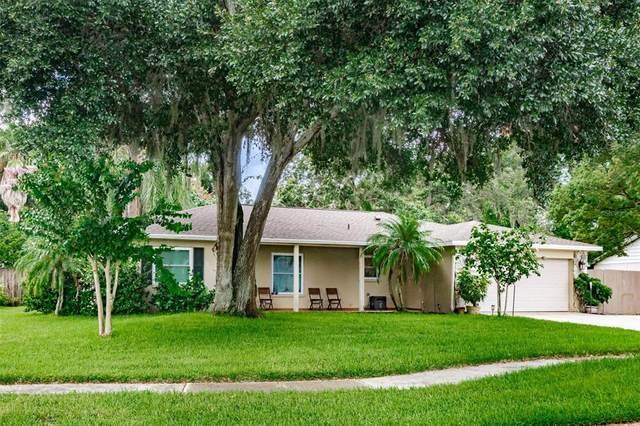 10809 Providence Oaks Drive, Riverview, FL 33578 (MLS #T3321392) :: The Posada Group at Keller Williams Elite Partners III