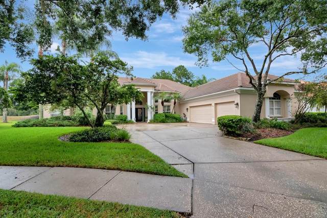 17817 Osprey Pointe Place, Tampa, FL 33647 (MLS #T3321397) :: The Curlings Group
