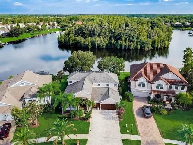 17933 Bahama Isle Circle, Tampa, FL 33647 (MLS #T3321420) :: Cartwright Realty