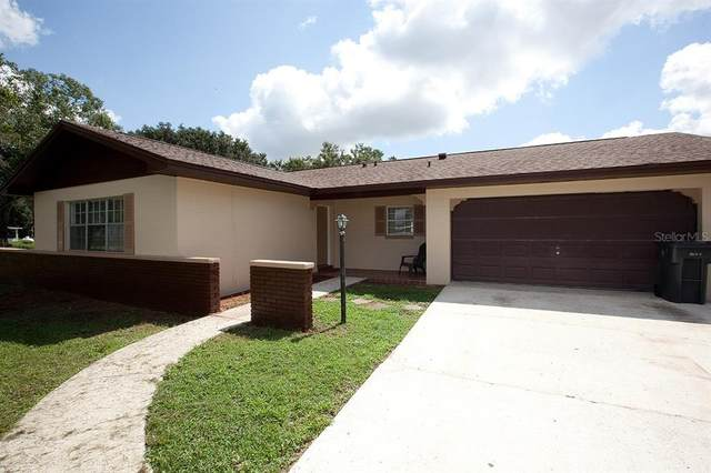 5204 S Farkas Road, Plant City, FL 33567 (MLS #T3321421) :: Visionary Properties Inc