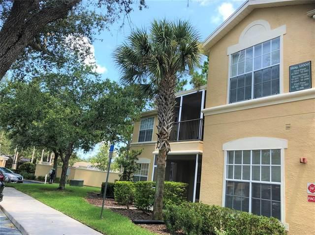 5125 Palm Springs Boulevard #12101, Tampa, FL 33647 (#T3321430) :: Caine Luxury Team