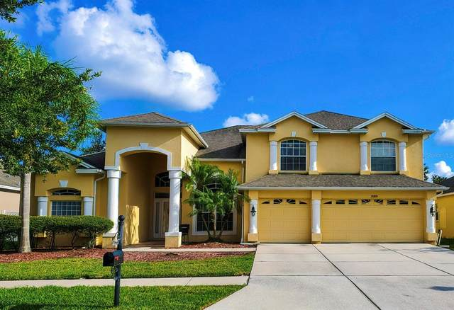 20808 Cedar Bluff Place, Land O Lakes, FL 34638 (MLS #T3321435) :: Griffin Group